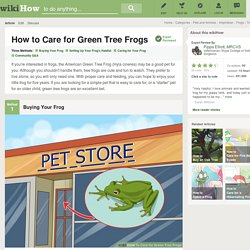 3 Ways to Care for Green Tree Frogs