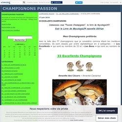 33 EXCELLENTS CHAMPiGNONS