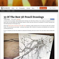 33 Of The Best 3D Pencil Drawings