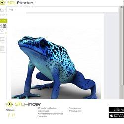 3D model - Poison Dart Frog