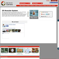 3D Muscular System game
