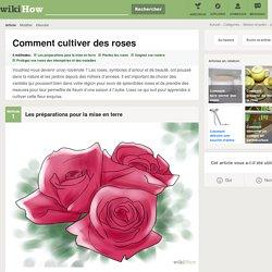 4 manières de cultiver des roses