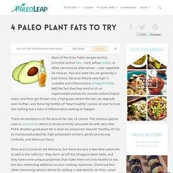 4 Paleo Plant Fats to Try