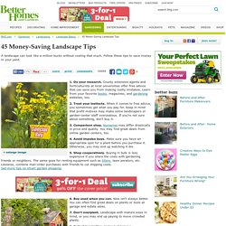 45 Money-Saving Landscape Tips
