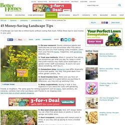 45 Money-Saving Landscape Tips