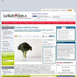 5 atouts santé du brocoli