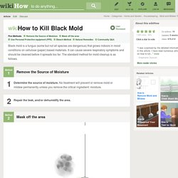 5 Ways to Kill Black Mold