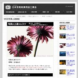 写真が上達するコツ ~ 第5回 光の読み方 WEB写真上達講座|一般社団法人 日本写真映像用品工業会