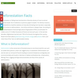 51 Facts About Deforestation - Conserve Energy Future
