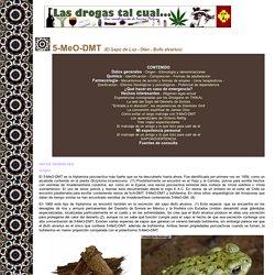 5meOdmt - Bufo alvarius - Sonoran Desert Toad