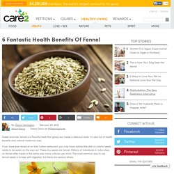 6 Health Benefits Of Fennel
