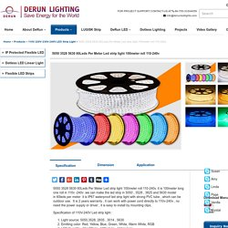 5050 3528 5630 60Leds Per Meter Led strip light 100meter roll 110-240v - DERUN LED