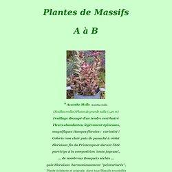 Plantes de massifs - A à B