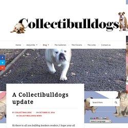 A Collectibulldogs update