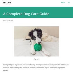 A Complete Dog Care Guide