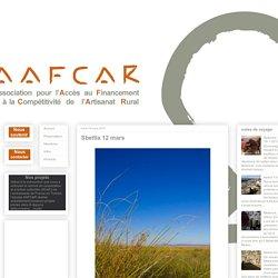 A.A.F.C.A.R.: Sbeïtla 12 mars