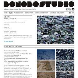 A d a m / Films / Film / Bonobostudio