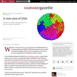 A new view of DNA