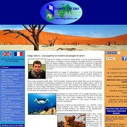 A Propos - Indigo Safaris