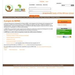 AFRIQUE régionalisation NEPAD