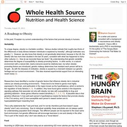 Whole Health Source: A Roadmap to Obesity