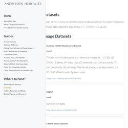 AI Playbook - Datasets
