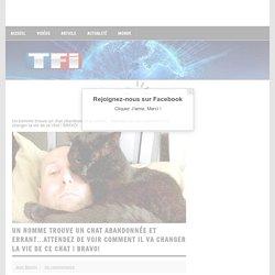 Un homme trouve un chat abandonnée et errant…Attendez de voir comment il va changer la vie de ce chat ! BRAVO!