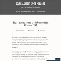 les morts indues, la Guinée abandonnée (décembre 2014)