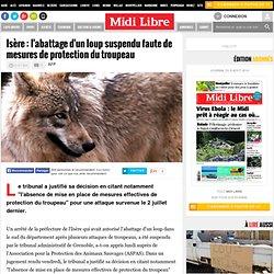 Isère : l'abattage d'un loup suspendu faute de mesures de protection du troupeau