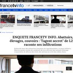 """ENQUETE FRANCETV INFO. Abattoirs, élevages, couvoirs : """"l'agent secret"""" de L214 raconte ses infiltrations"""