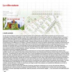 La ville-nature - L'abeille sentinelle - CNRS sagascience