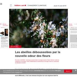 Les abeilles déboussolées par la nouvelle odeur des fleurs - Edition du soir Ouest France - 13/06/2019