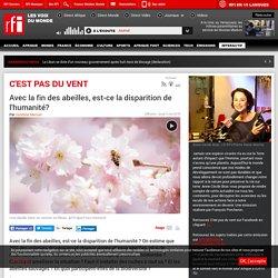 RFI 03/05/18 C EST PAS DU VENT - Avec la fin des abeilles, est-ce la disparition de l'humanité?