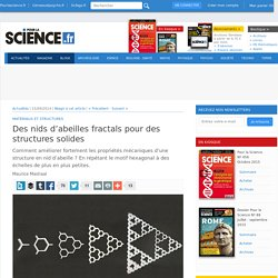 Des nids d'abeilles fractals pour des structures solides - Pour la Science 15/09/2014