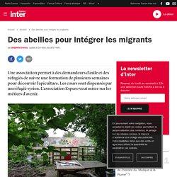 Des abeilles pour intégrer les migrants