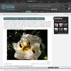 abeilles et ressources florales