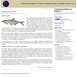 Pêche de l'ablette au coup et à la mouche > La pêche en rivière : poissons et techniques