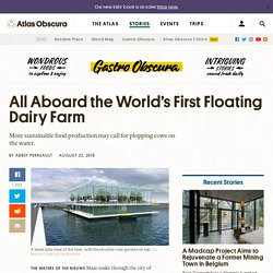 World's First Floating Dairy Farm