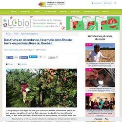 Des fruits en abondance, l'exemple dans 5ha de terre en permaculture au Québec