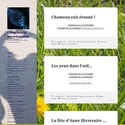 Le blog scientifique du collège André Lallemand
