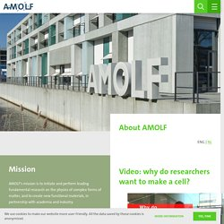 AMOLF - Laboratoire de recherche sur la physique des systèmes biomoléculaires (Amsterdam), relève de Foundation for Fundamental Research on Matter (FOM)