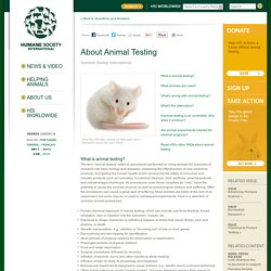 About Animal Testing