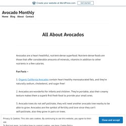 All About Quality Avocado