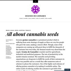 All about cannabis seeds