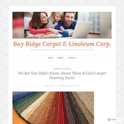 We Bet You Didn't Know About These 6 Cool Carpet Flooring Facts! – Bay Ridge Carpet & Linoleum Corp.
