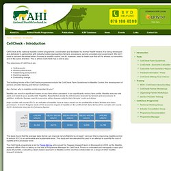 countdown downunder farm guidelines for mastitis control