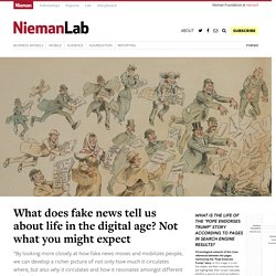 What does fake news tell us about life in the digital age? Not what you might expect
