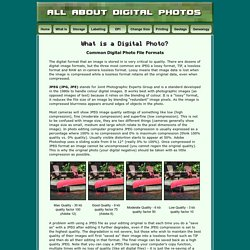 Digital Photo File Types