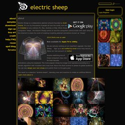 about | electric sheep