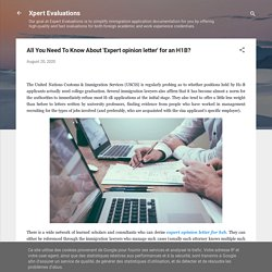 All You Need To Know About 'Expert opinion letter' for an H1B?